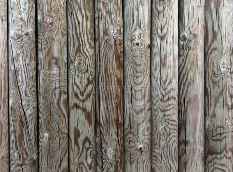 Palizada - cerca de las participaciones de madera fotografía de archivo libre de regalías