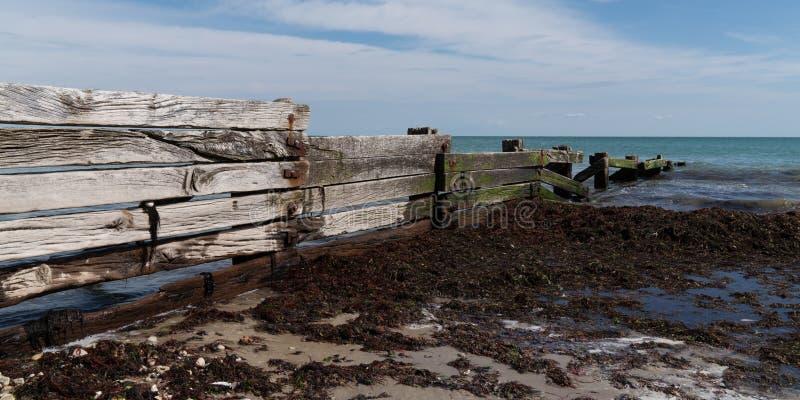 Palizzata sulla costa per rompere le onde attaccate da spuma nell'insegna del modello Web fotografia stock