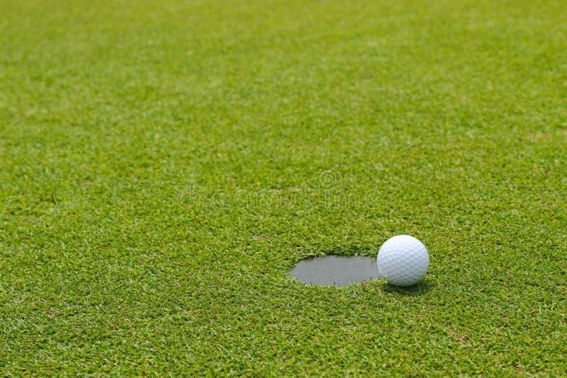 Palla da golf al bordo di mettere la tenuta della tazza al verde mettente fotografie stock