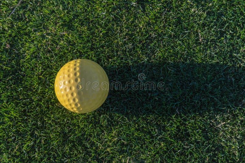Palla da golf gialla con la sua ombra sull'erba di un corso vicino alla S immagine stock libera da diritti