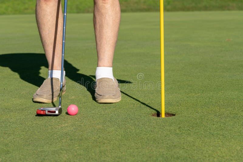 Palla da golf rosa dalla bandiera e dal foro su verde mettente fotografia stock libera da diritti