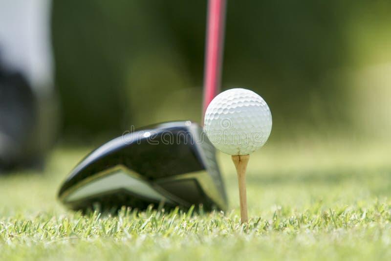 Palla da golf su un T immagine stock