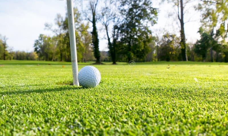Palla da golf sul prato inglese immagine stock