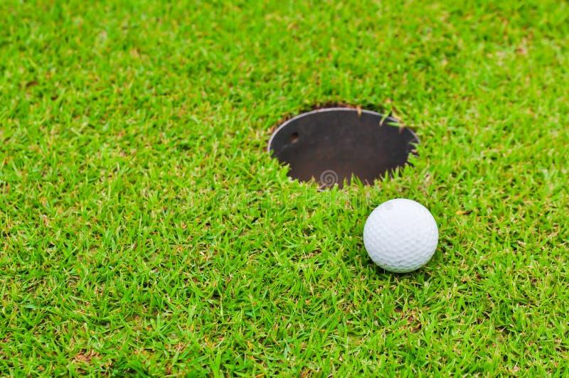 Palla da golf sul prato inglese fotografia stock
