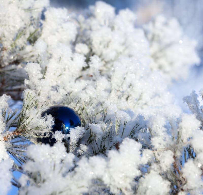 Palla degli ornamenti di Natale fotografia stock