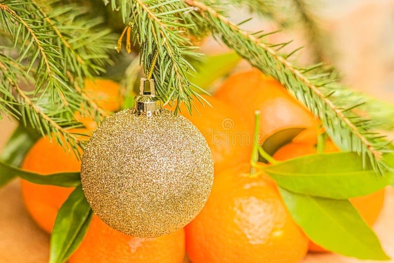 Palla di Natale sul ramo dell'abete e sui mandarini arancio, primo piano fotografia stock libera da diritti