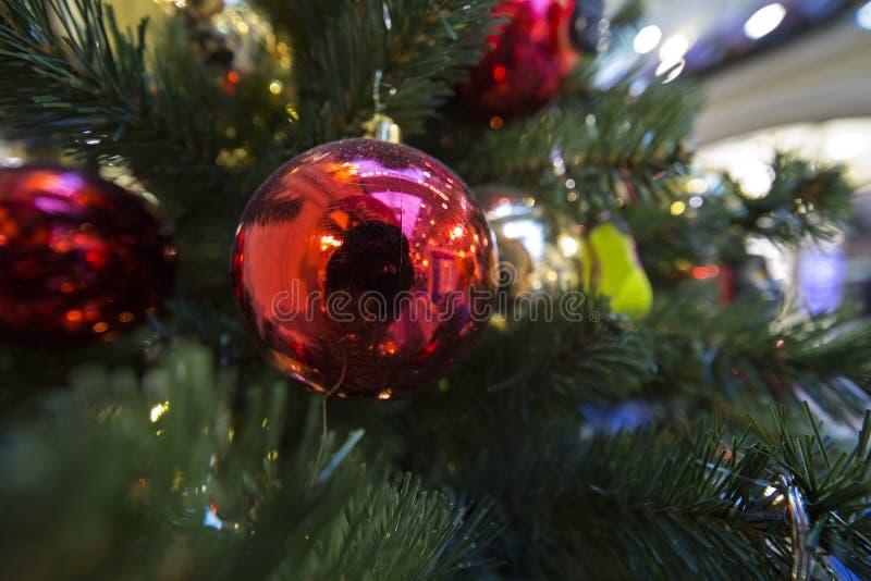 Palla e luce di colore sull'albero di Chrismas immagini stock