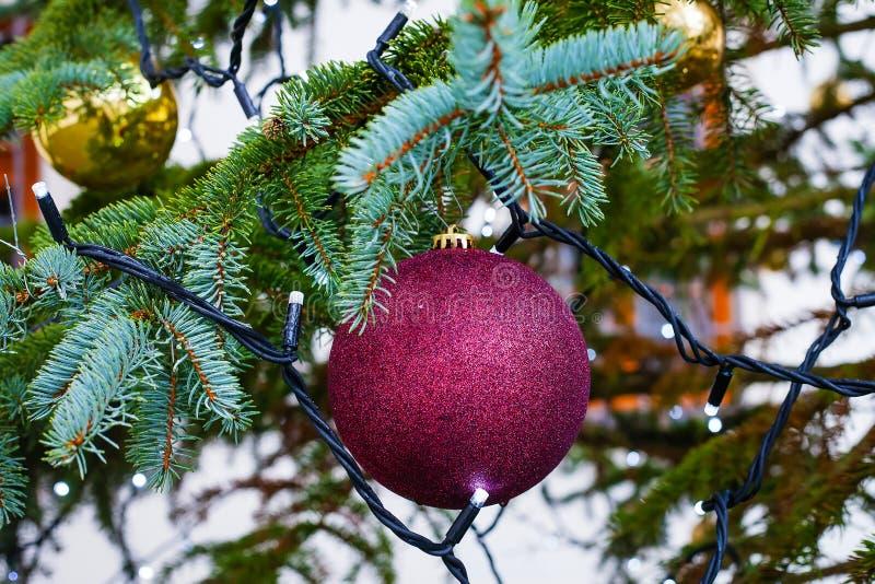 Palla porpora della decorazione di Natale su un ramo di albero immagine stock libera da diritti