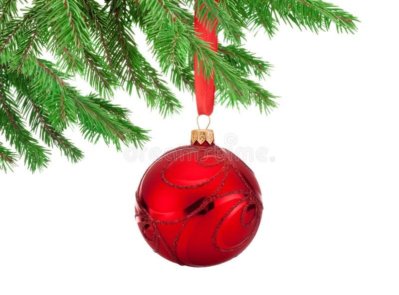 Palla rossa di Natale delle decorazioni che appende su un ramo di albero dell'abete immagine stock
