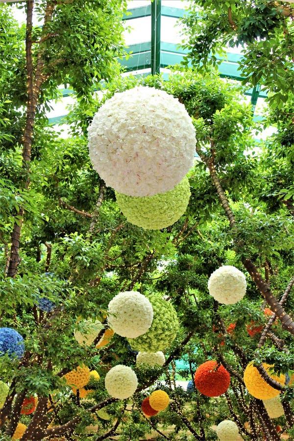 Palle decorative d'attaccatura variopinte vibranti del fiore immagini stock libere da diritti