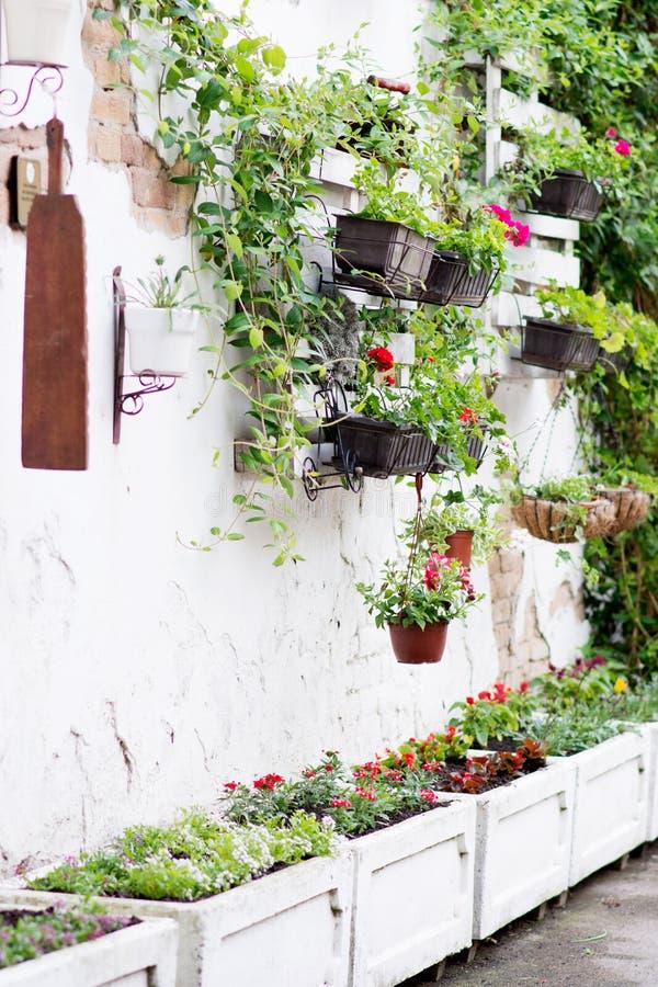 Pallet ideas for gardening stock image. Image of backyard - 71506495