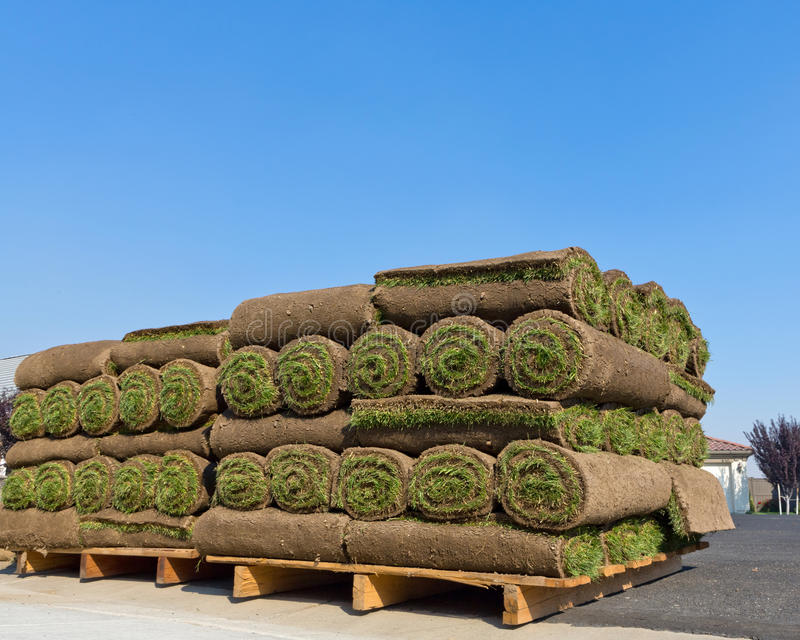 Pallets of sod. For new lawn stock photography