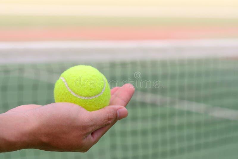 Pallina da tennis della tenuta della mano immagini stock libere da diritti
