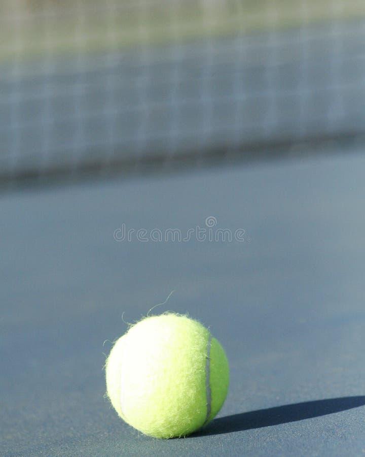 Pallina da tennis sola immagine stock