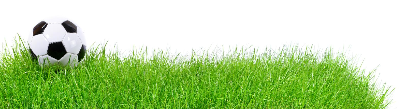 Pallone da calcio su erba - panorama fotografie stock