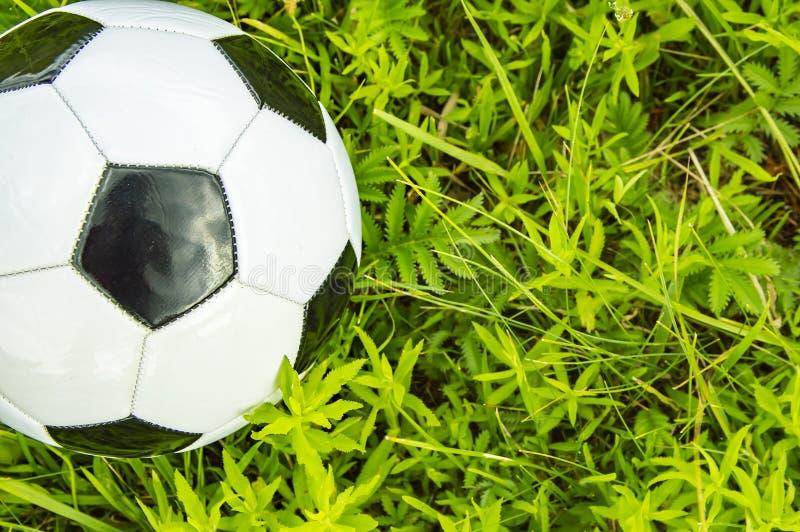 Pallone da calcio su erba verde - posto per testo fotografie stock libere da diritti