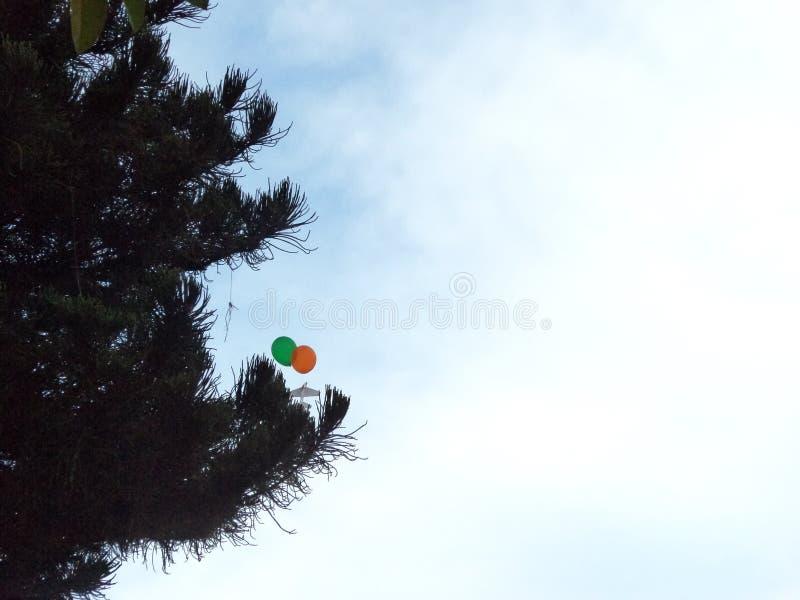 Pallone di volo fotografia stock libera da diritti