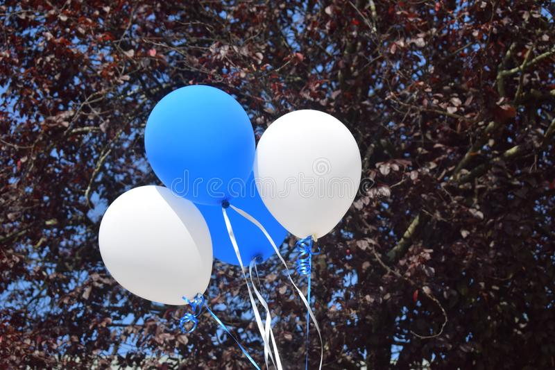 Palloni blu e bianchi fotografia stock