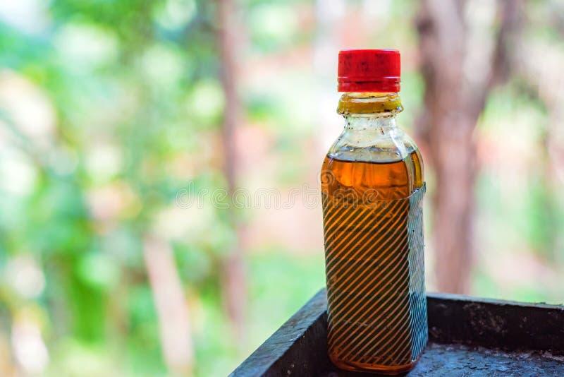 Palmöl in der kleinen Plastikflasche lizenzfreie stockfotografie