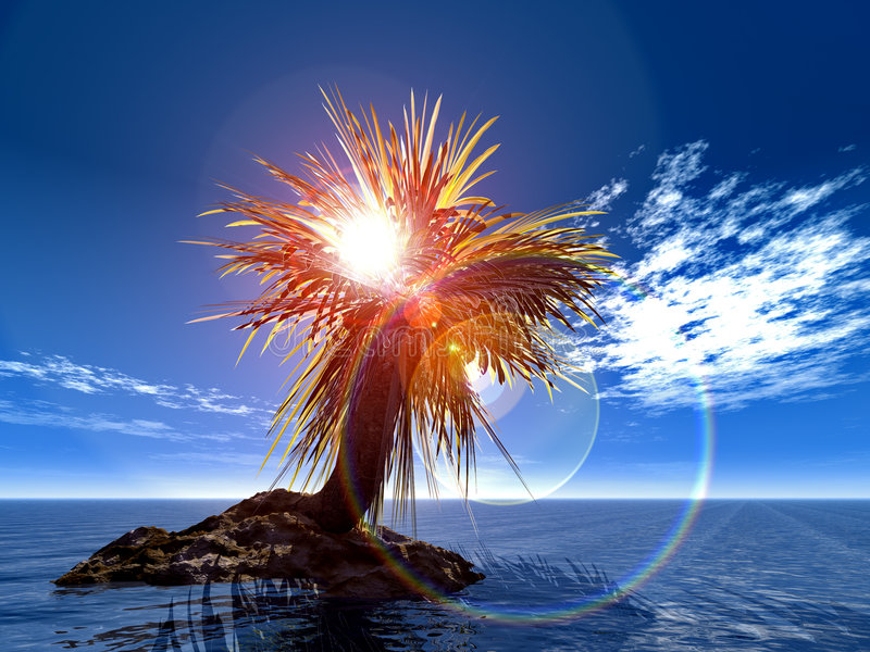 Download Palm Royalty Free Stock Images - Image: 1392689