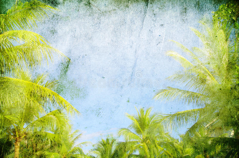Download Palm stock photo. Image of lagoon, fantasy, nature, cloud - 24416346