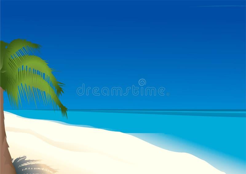 Palm royalty free illustration