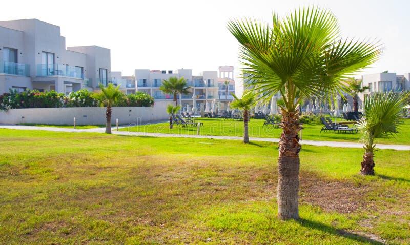 Palm Beach avec des lits pliants vides contre Constantinou Bros Athena Beach Hotel L'hôtel était entièrement au sujet de image stock