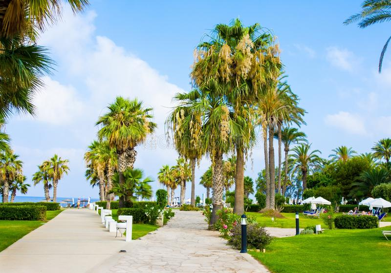 Palm Beach avec des lits pliants vides contre Constantinou Bros Athena Beach Hotel L'hôtel était entièrement au sujet de photos libres de droits