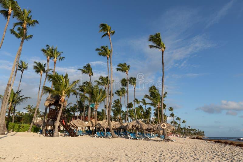 Palm Beach dominikan som är karibisk fotografering för bildbyråer