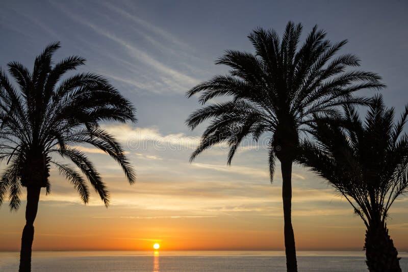 Palm Beach, kust, zonsondergangmening De scène van de de zomeraard stock afbeelding