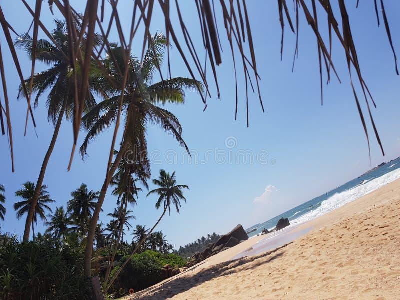 Palm Beach på havet arkivfoto