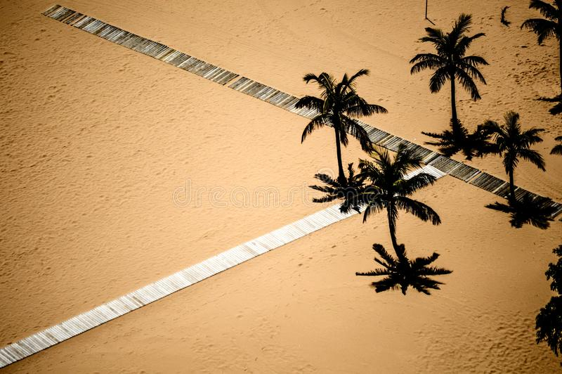 Palm beach scene stock image
