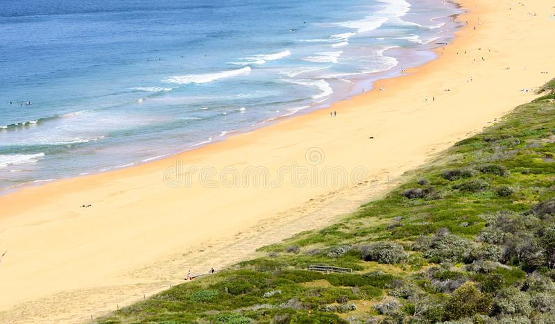Palm Beach Sydney. A panoramic view of Palm Beach in Sydney`s Northern Beaches suburb royalty free stock photo