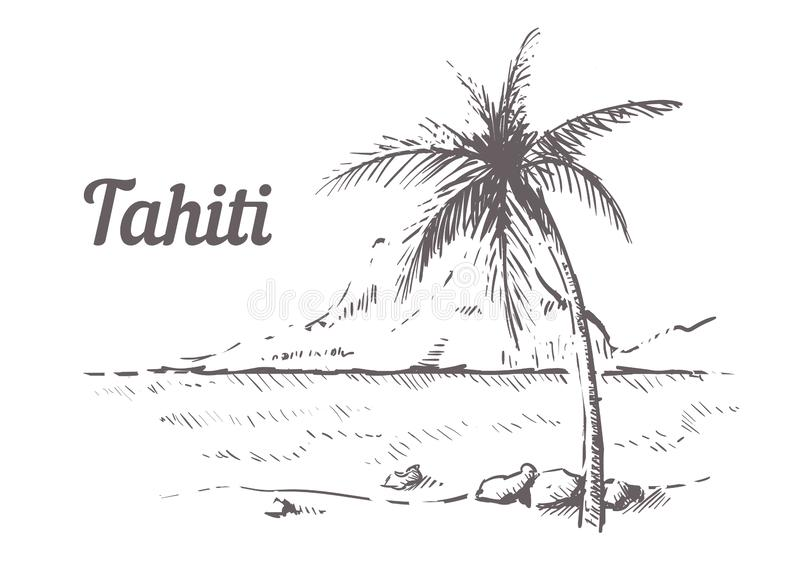 Palm Beach-Tahiti-Hand gezeichnet Tahiti-Skizzenvektorillustration lizenzfreie abbildung