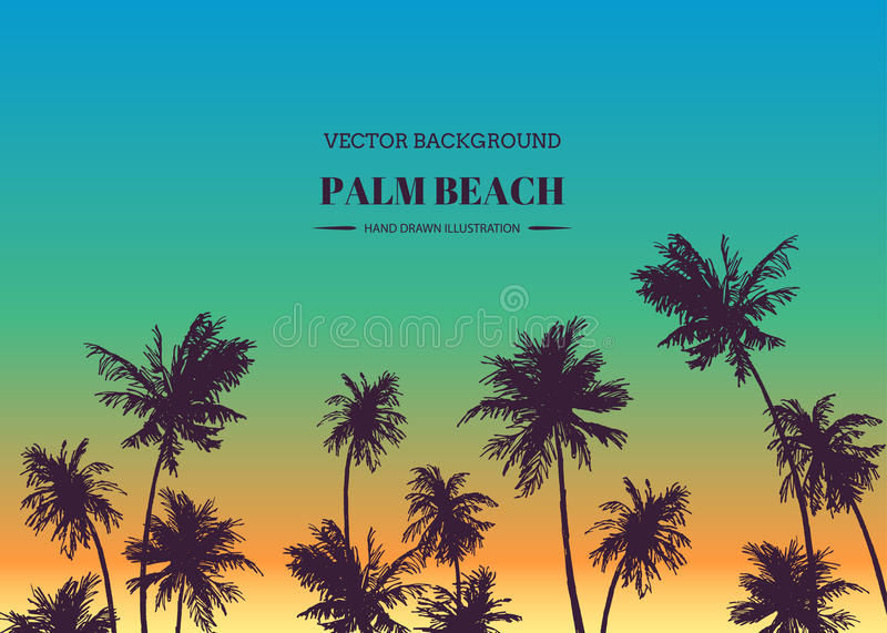 Palm beach. Vector hand drawn background for tropical design. Sk royalty free illustration