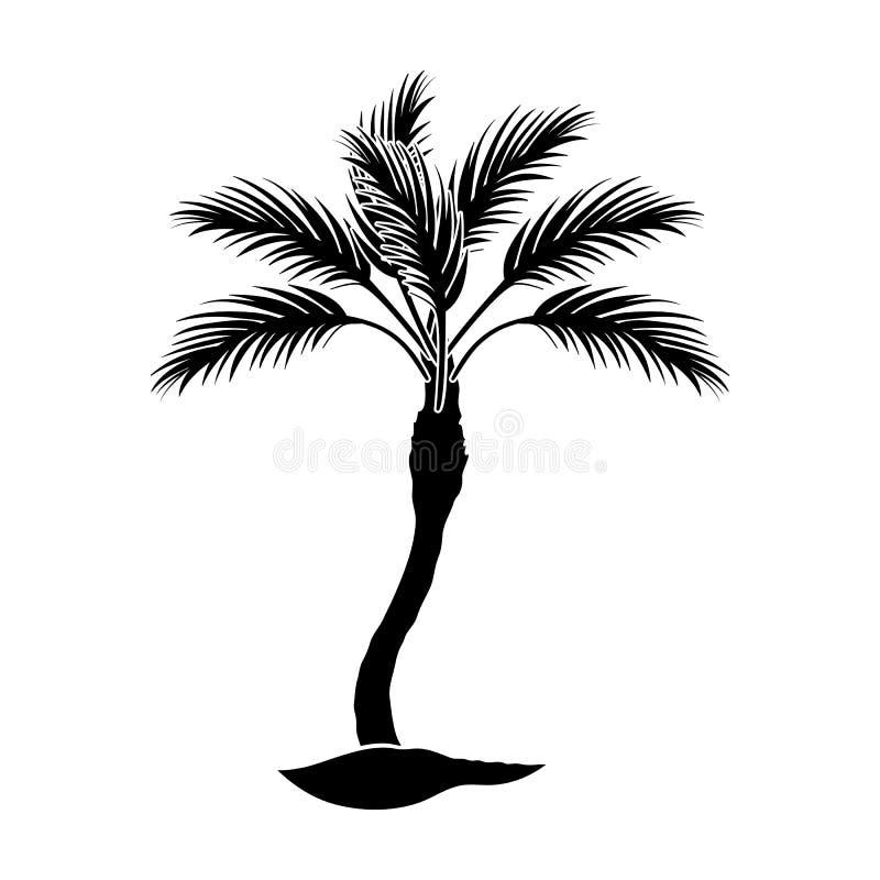Palm- Beachbaum Sommerrest sondern Ikone in der schwarzen Artvektorsymbol-Vorratillustration aus lizenzfreie abbildung