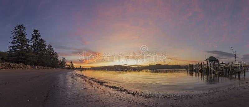 Palm Beachwerf stock fotografie