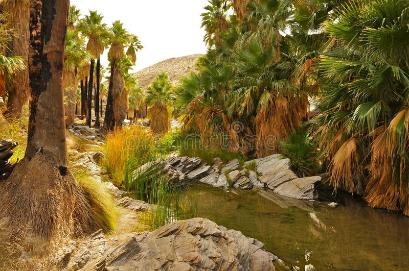 Palm Canyon, Palm Springs. CA royalty free stock image