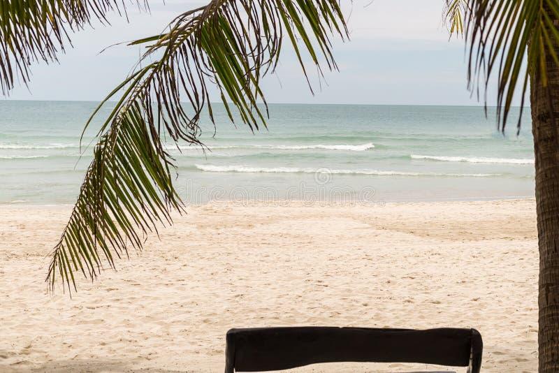 Palm coconut beach rest relax relax sand ocean beach chair landscape tropical island royalty free stock photos