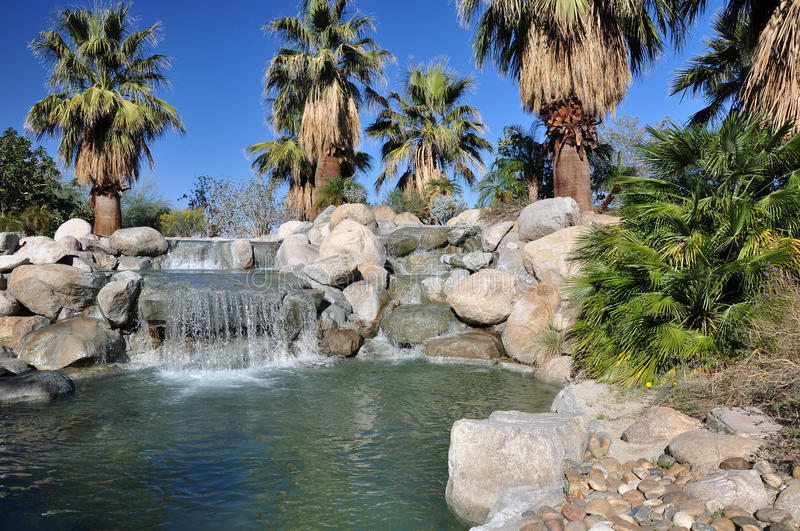 Palm Desert oasis stock images