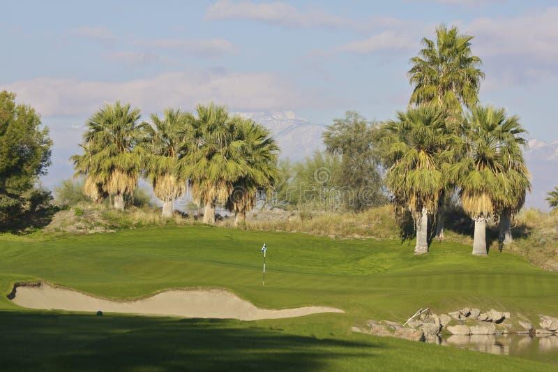 Palm- Desertgolf lizenzfreie stockbilder
