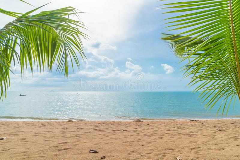 Palm with empty beach. Beautiful palm with empty beach stock images