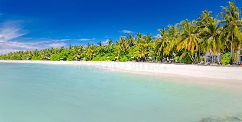 Palm en tropisch strandpanorama Exotische landschapsplaats, tropisch weer en kalme overzees met palmen De toevlucht van het luxes stock foto