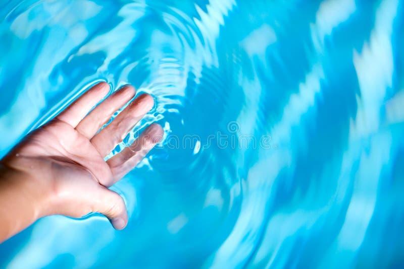 Palm en water stock foto's