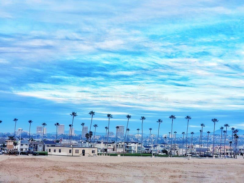 /palm för strandhus träd royaltyfri foto