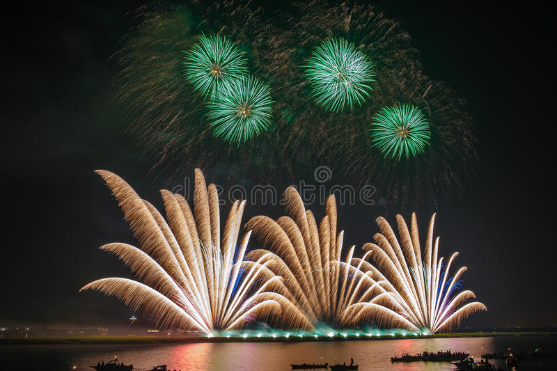 Palm Fireworks royalty free stock photography