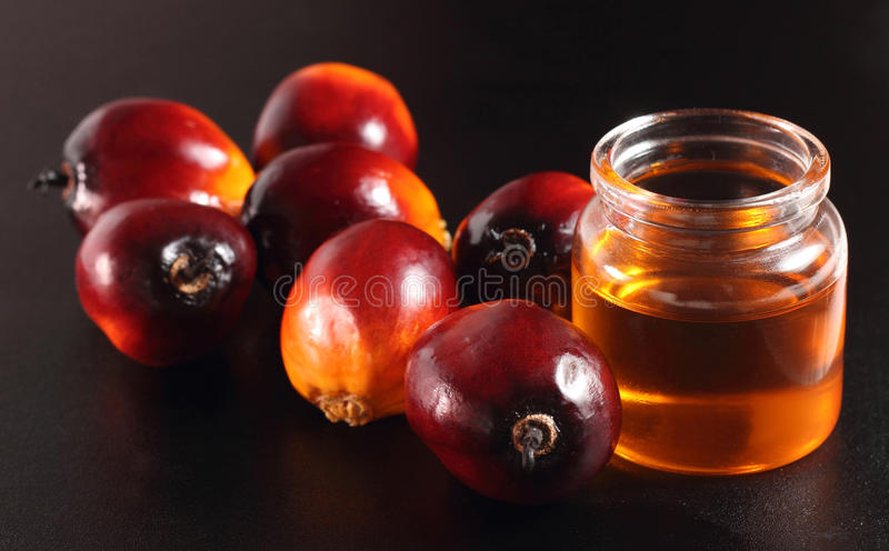 Download Palm fruit and cooking oil stock photo. Image of yellow - 32375398