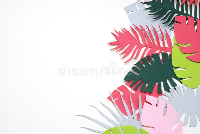 Palm Green Leaves Tropical Exotic Tree Isoalted on White Background. Square Image. Holliday Patern Template Leaf stock photos