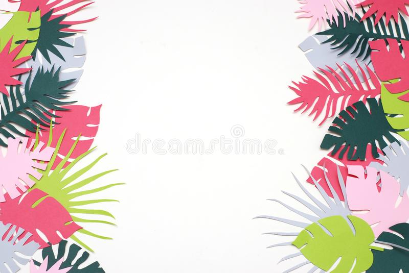 Palm Green Leaves Tropical Exotic Tree Isoalted on White Background. Square Image. Holliday Patern Template Leaf stock image
