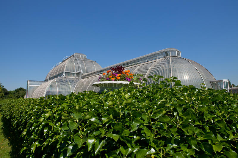 Download The Palm House, Kew Gardens Royalty Free Stock Images - Image: 25950149